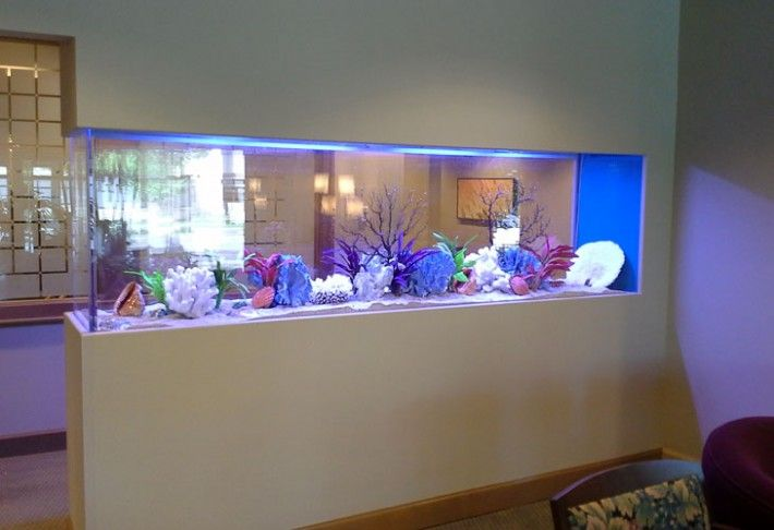 aquarium accessories online, aquarium plants online, marine aquarium supplies and aquarium products online